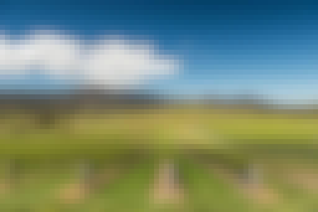 Mt langi winery landscape east ararat 21