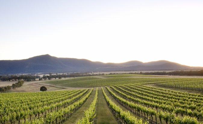 Mt-Langi-Ghiran-Winery-2