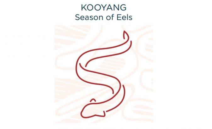 Eels-Season-2