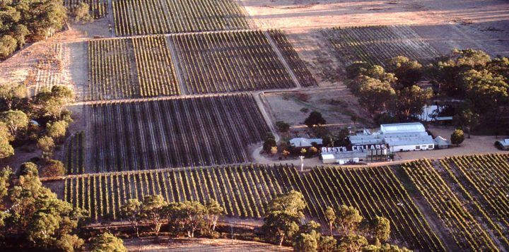 Bests-Wines-Aerial-View