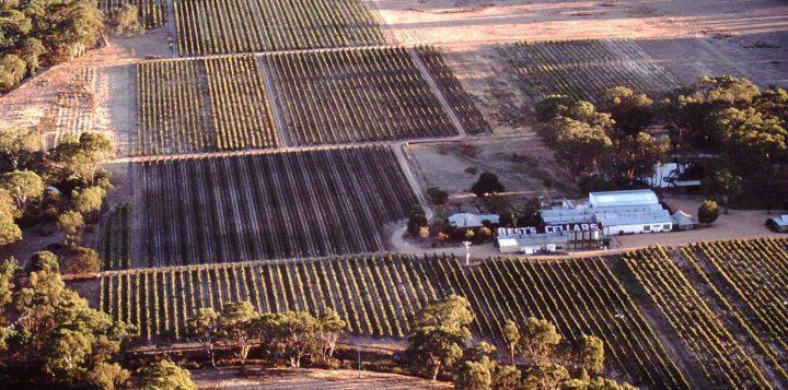 Bests-Wines-Aerial-View