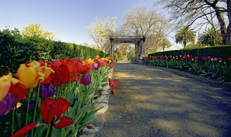 Horsham-Botanic-Gardens