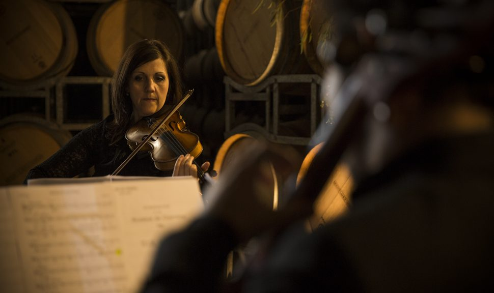 Wine-Symphony-Violin